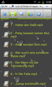 SC20111220 005621 180x300 Musik auf Android Geräte streamen