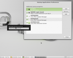 Linux Mint Autostart