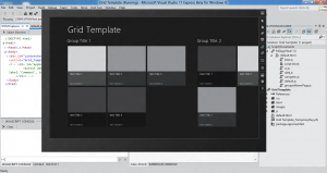 Visual Studio 11 Grid Template