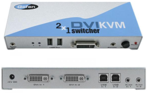 dvi switch