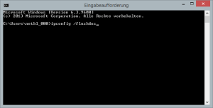 Windows DNS-Cache leeren