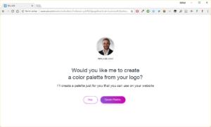 10 Farbpalette aus Logo